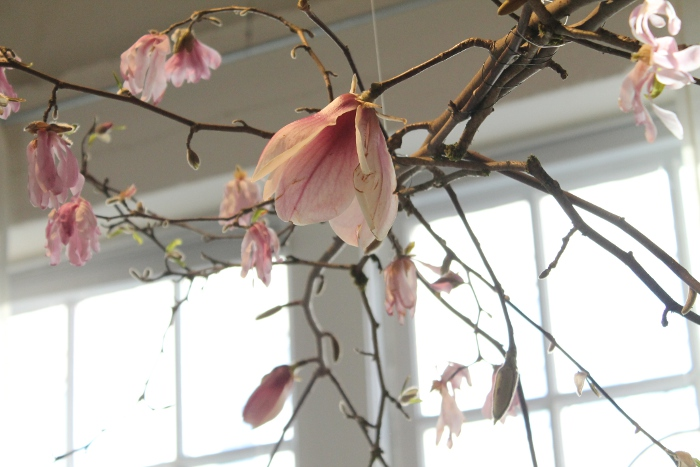 Beautiful pink flowers hung from the ceiling